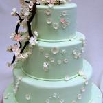 bruiloft en feest